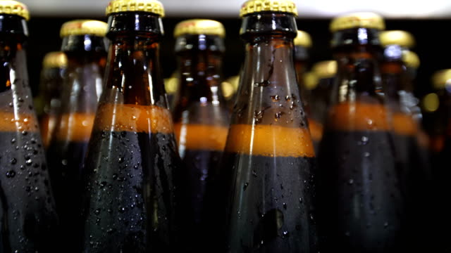 Bottles of beer go through the conveyor video