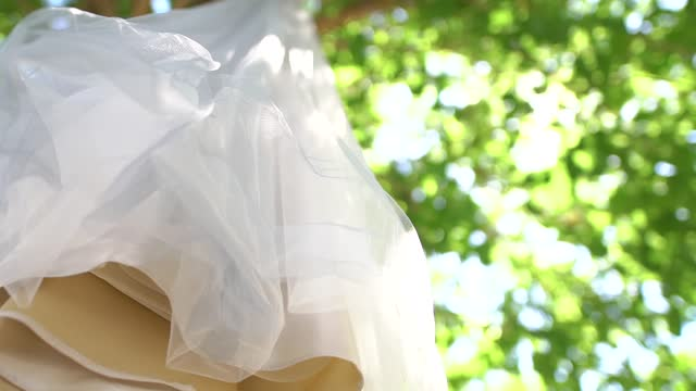 bottom view of delicate bridesmaid dress with an airy chiffon skirt hanging on the green branches of a tree on a sunny day