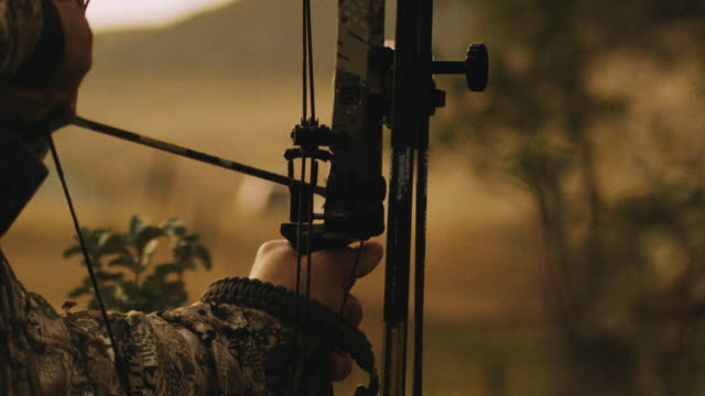 A bow hunter aims and takes his shot in slow motion, the arrow leaves the rest, hitting its animal target. This shot was designed to signify success, hard work, aim, power.