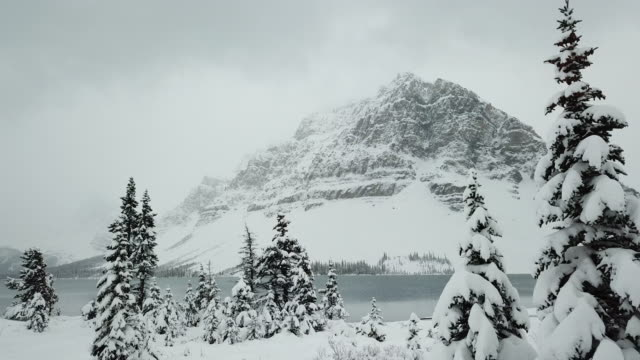 Bow lake in Winter