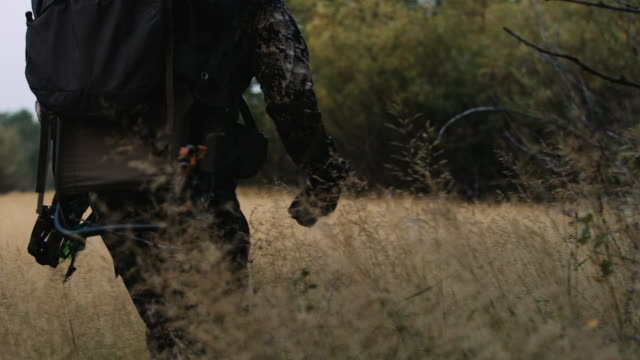 A bowhunter walks slowly through the bushes tracking his prey. The camera tracks from closeup on the hunter's legs to a wide and he walks, carrying his bow with his heavy pack on his back. video