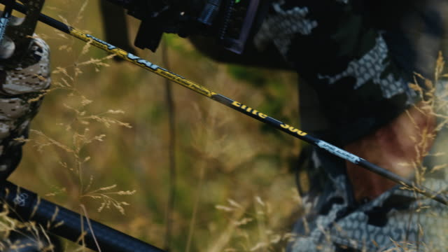 A bowhunter's sharp arrow is clearly visible as he waits and watches his prey move. video