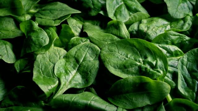 Bowl Of Spinach Rotating Closeup