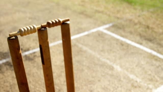 Bowler liefert Ball während Cricket match – Video