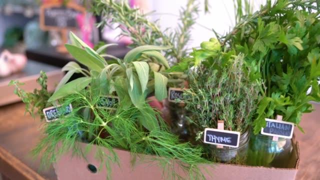 vidéos et rushes de une boîte d'herbes fraîches dans une petite épicerie - plante aromatique