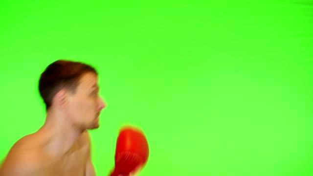 pugile boxe su uno schermo verde - colpire con un pugno video stock e b–roll