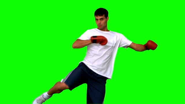 vídeos de stock e filmes b-roll de boxer efectuar um pontapé no ar, na tela verde - boxe tailandês
