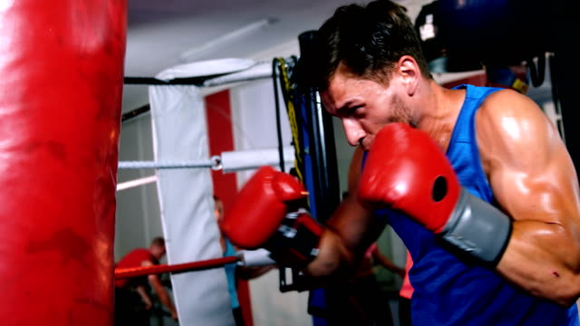 boxer practicing boxing with punching bag - sacco per il pugilato video stock e b–roll