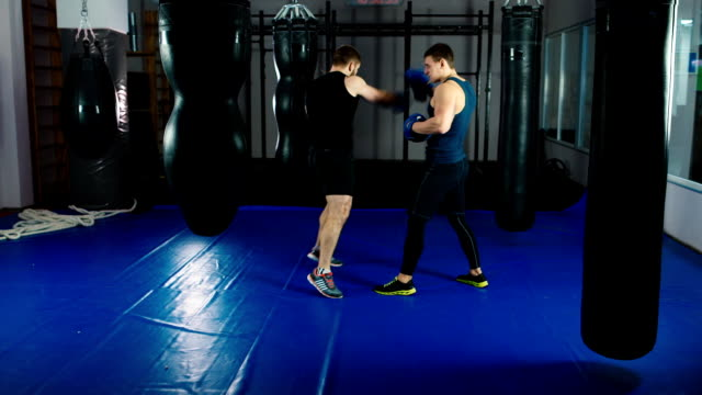 Boxer training with a partner video