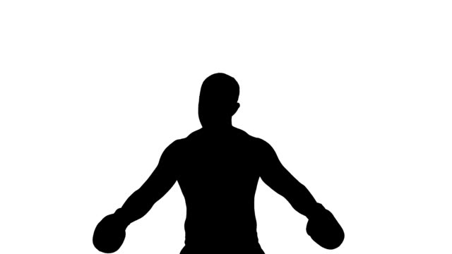 Boxer winner silhouette on white background video