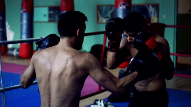 リングでの練習のボクサー ビデオ