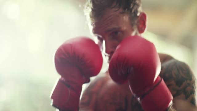 boxing gloves on and the world off - sacco per il pugilato video stock e b–roll