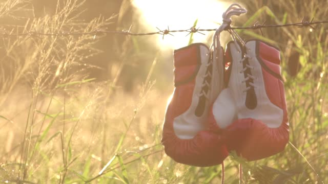 vídeos de stock e filmes b-roll de boxing gloves that are hung on the barbed wire - músculo humano