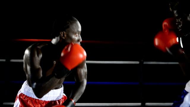 ボクシングの試合 - ボクシング点の映像素材/bロール