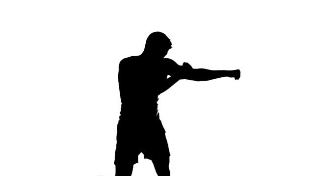 ボクサーボクシングシルエット、スパーリング Shadowboxing 、パンチ、トレーニング、練習 ビデオ