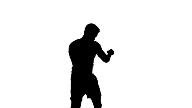 Boxing Silhouette (slow motion) video