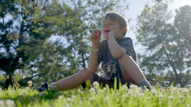 vídeos de stock, filmes e b-roll de o menino 7 anos velho está sentando-se na grama verde no parque e aprecia a natureza bonita. - boa sorte