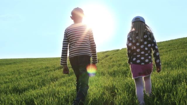 男の子と女の子は、明るい太陽の光緑の草原の上を歩いてします。 ビデオ