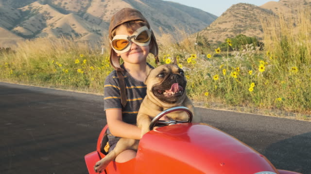 oyuncak yarış arabası'nda çocuk ve köpeği - erkek çocuklar stok videoları ve detay görüntü çekimi
