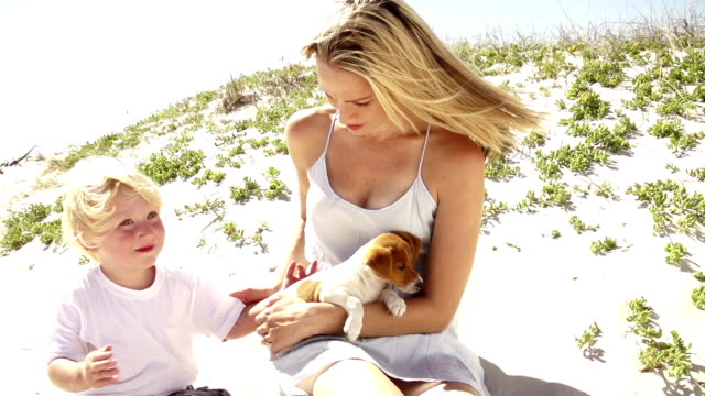 Boy and puppy sitting in mother's lap video