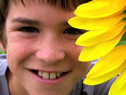Boy Beside Huge Sunflower video