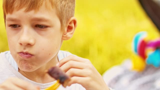 Boy enjoying barbecue outdoors video