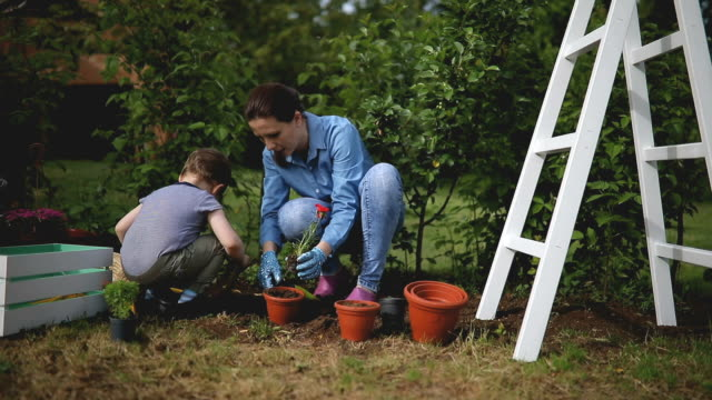 Boy helps her mother in garden video