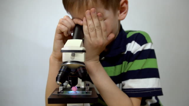 A boy in a striped T-shirt examines parts of the plant under a microscope. video