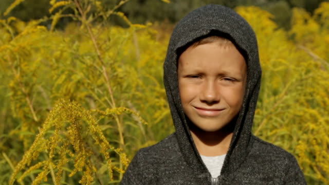 a boy in a tall grass and a gray sweater with a hood on his head - solo bambini maschi video stock e b–roll
