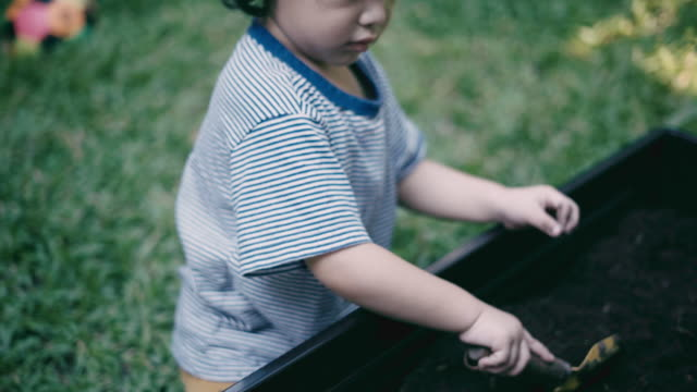 boy learns to dig the soil video