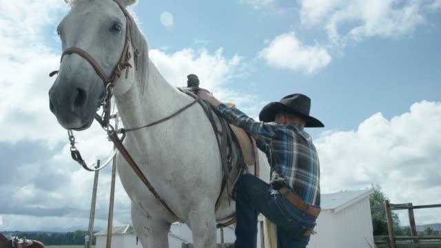 A Boy Mounts his Horse