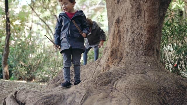 Jungen spielen im park – Video