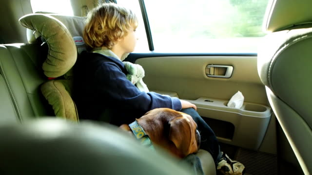 Boy Riding In Car With Dog video