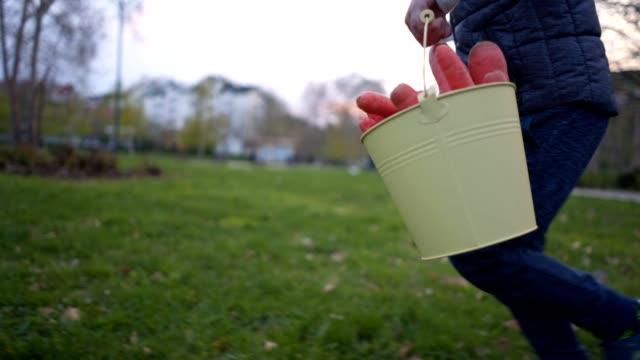 junge laufen mit einem eimer von karotten, die er bei der ostereiersuche gefunden hat - karotte peace stock-videos und b-roll-filmmaterial