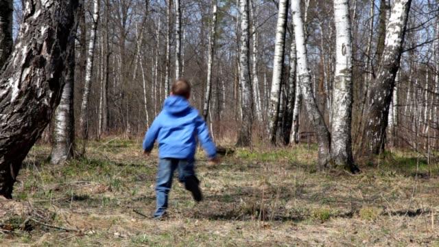 Boy runs to spring birch grove from camera video