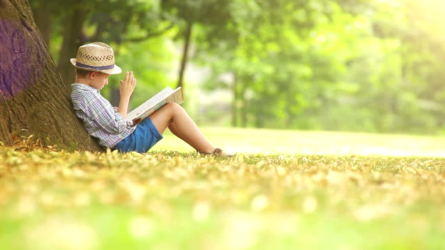 Boy sits beside the tree on a sunny summer day and reads a book