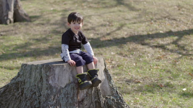 Boy sits on a tree stump and waves his legs around video