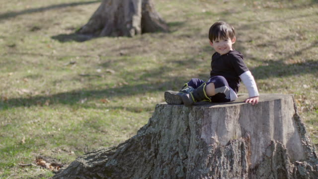 Boy sitting on a tree stump in the park and smiling video