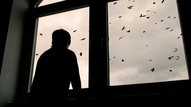 boy standing at window and looks at a pack of ravens that is spinning in the sky video