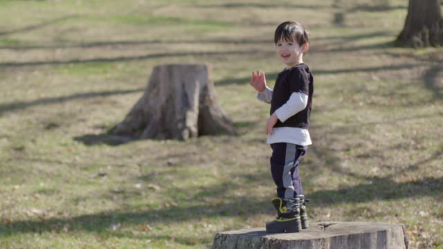 Boy standing on a tree stump in the park and smiling video