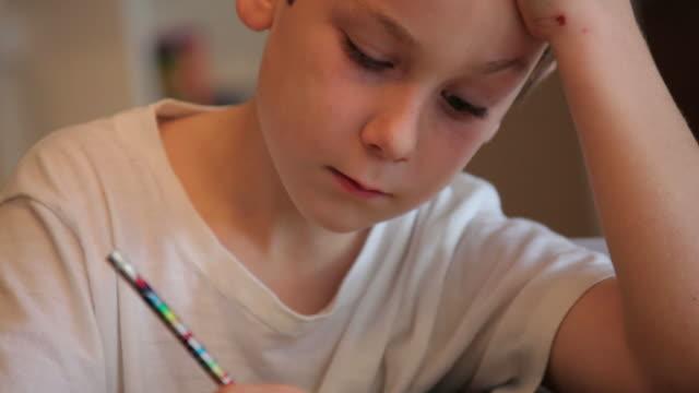 ragazzo studiando i suoi compiti a casa - solo bambini maschi video stock e b–roll