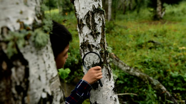 Boy studying parasitic plant with a magnifying glass in forest