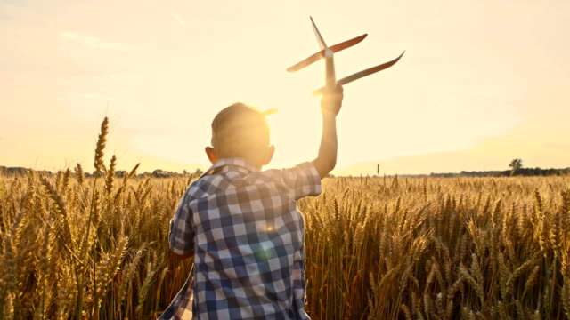 SLO MO Boy throwing airplane toy in wheat field video