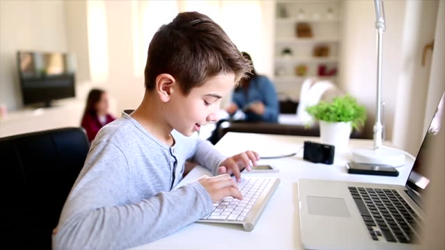 Boy using lap top at home video