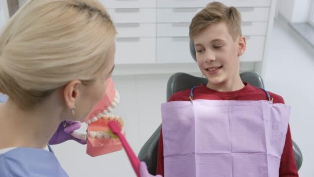 pojken tittar på den tandhygienist visar honom det rätta sättet att borsta tänderna med en modell - two dentists talking bildbanksvideor och videomaterial från bakom kulisserna