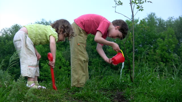 Boy watering plant, girl digging hole video