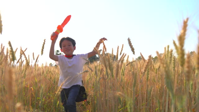A boy wearing a red robe And carrying a toy sword Running in the wheat field He used his imagination to think of him as a knight. Run freely in the wheat fields.