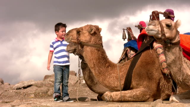 Boy with a camel video
