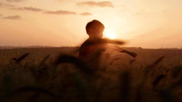 junge mit einem superhelden-umhang in einem goldenen weizenfeld - held stock-videos und b-roll-filmmaterial