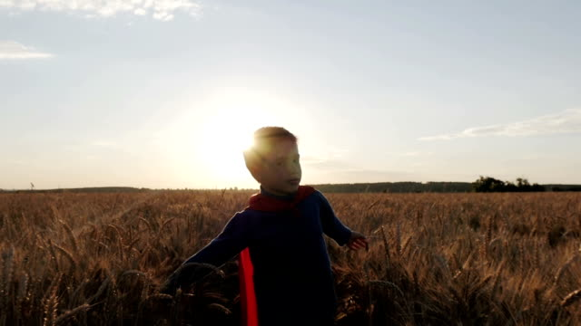 Boy with a superman cape stands in a golden fields video